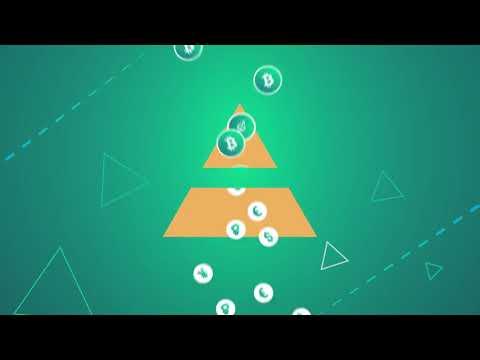 Zichain   Blockchain asset management ecosystem  Zichain (PreICO) Decentralized Asset Management