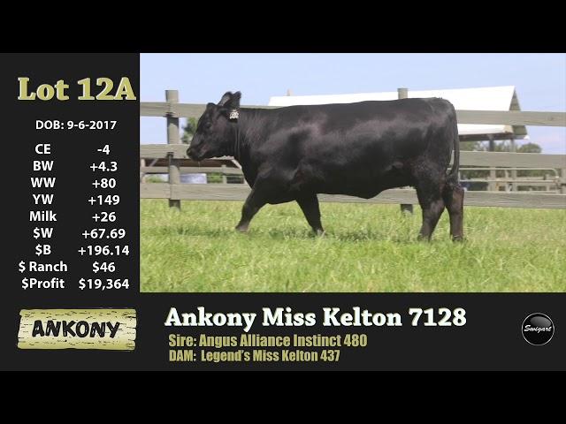Ankony Lot 12A