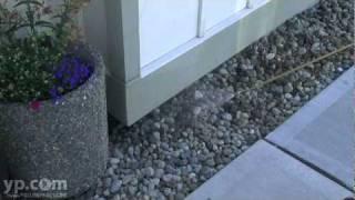 Termite Exterminators Kent WA Sound Pest Management