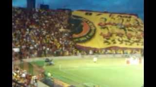 Torcida Jovem do Sport - Sport x São Paulo - Campeonato Brasileiro Serie A 2012