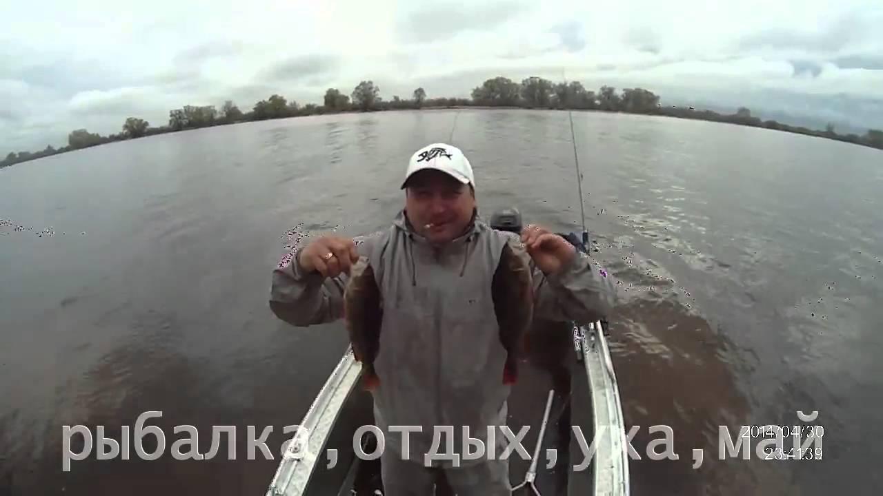 Рыбалка в рязанской области шилово