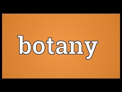 Botany Meaning