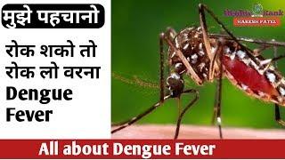 मुझे पहचानो, मैं हु Dengue Fever का कारण    रखे ये सावधानी, मैं कभी नहीं आऊँगा    Health Rank