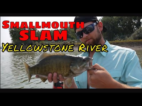 Smallmouth Bass Fishing in Montana - Yellowstone River - 2017