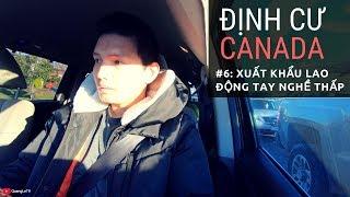 Định cư Canada #6: Xuất khẩu lao động Canada tay nghề thấp, Hái Nấm   Quang Lê TV #191