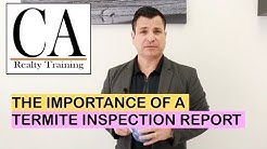 Ep. 79: Why Is A Termite Inspection Important In Real Estate Transactions?