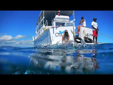 Savala Island, Fiji -  Day Sailing Trip - Oolala Cruises