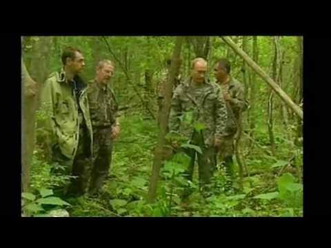 Vladimir Putin Shoots Siberian Tiger