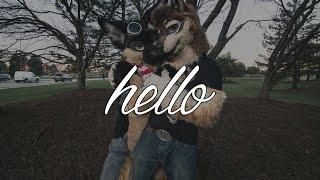 """""""Hello"""" (A Furry Story)"""
