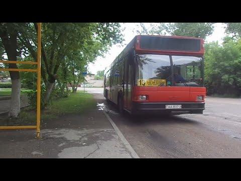 Автобус №13 (Витебск). Поликлиника им. Калинина - Мишково, завод МДСК.