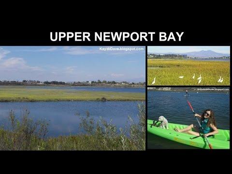 UPPER NEWPORT BAY (Newport Back Bay) - Newport Beach - Kayak, Stand Up Paddle Board  SUP, Canoe