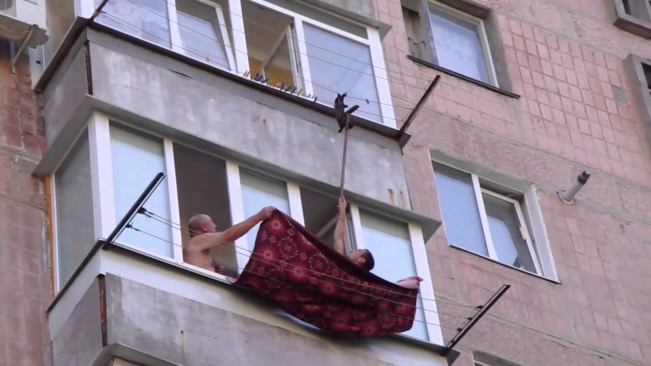Men Rescue Kitten Hanging On Clothesline