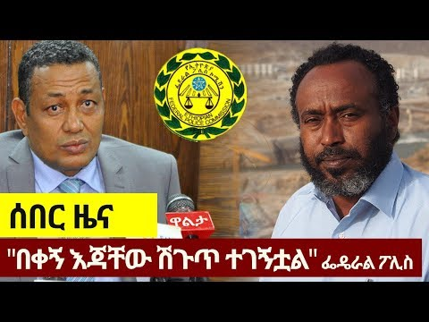 Engineer Simegnew Bekele: Statement by Federal Police Commissioner Zeynu Jemal