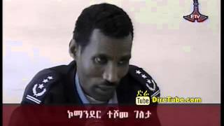 Ethiopian Constitution The Foundation Of Peace Security and Proseperity