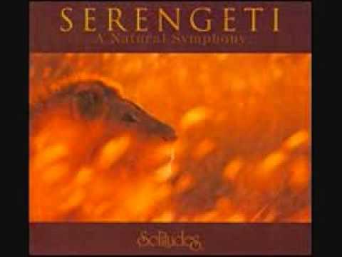 Serengeti Sunrise - Serengeti Track 1