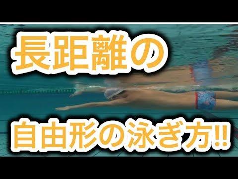 【水泳】長距離の泳ぎ方を知れば息が上がらなくなります。