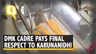 #RIPKalaignar: DMK Cadre Pays Homage to Karunanidhi | The Quint