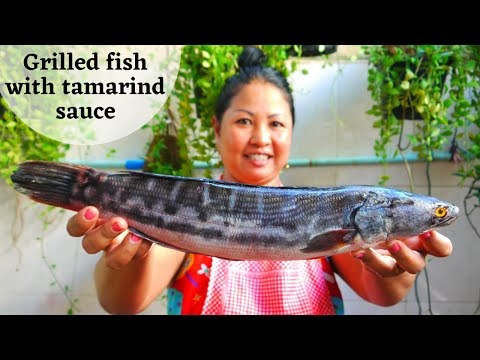 Grilled Fish With Tamarind Sauce Recipe | Dary Cooking