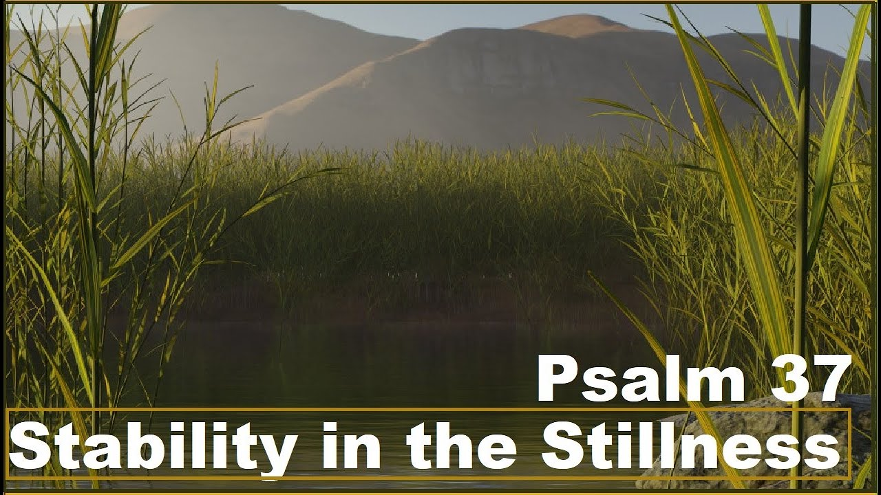 Stability in the Stillness