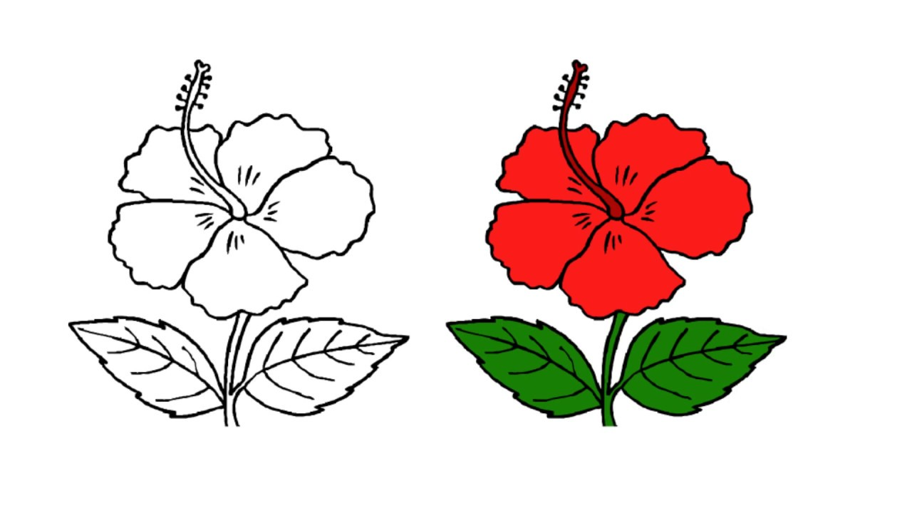 Fun To Drawing Easy And Simple Way Draw A Flower China Rose Youtube