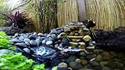 Bamboo garden, creek and turtle pond
