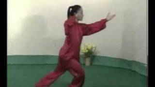 Tai chi 48 form complete demonstration