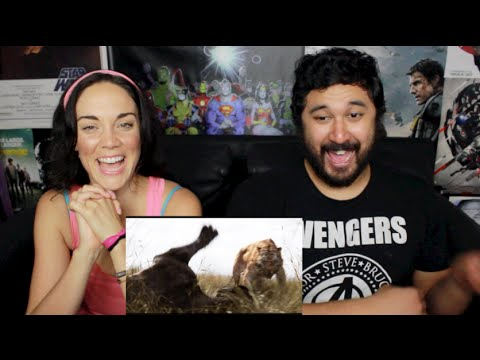 THE JUNGLE BOOK Official Teaser TRAILER #1 REACTION & REVIEW!!!