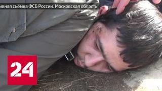 видео стрижка огнем в в  Санкт-Петербурге