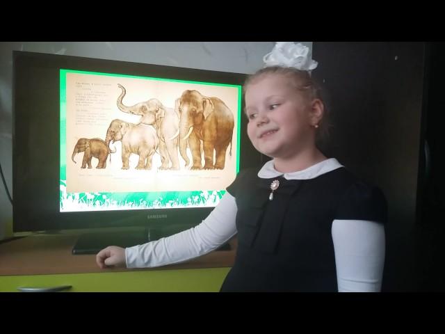 Изображение предпросмотра прочтения – ПолинаФролова читает произведение «Что ни страница, — то слон, то львица» В.В.Маяковского