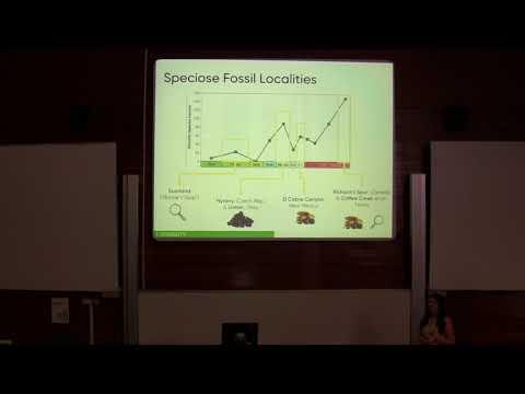 Terrestrial Tetrapod Diversity and Biogeography Across the Carboniferous/ Permian Boundary