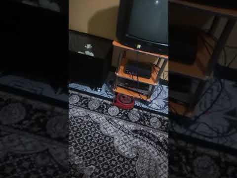 Wasmo-Live-Ah-Bash-Six-somali.com