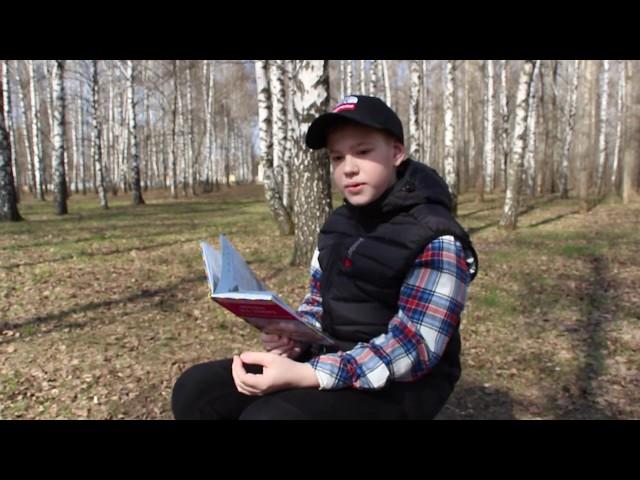 Изображение предпросмотра прочтения – АлександрЮдин читает произведение «Зеленый шум» Н.А.Некрасова