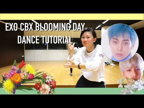 EXO-CBX (첸백시) '花요일 (Blooming Day)' Dance Tutorial | Full W Mirror [Charissahoo]