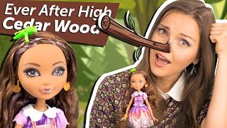Cedar Wood Basic (Сидар Вуд Базовая) Ever After High Обзор и Распаковка  Review BDB11