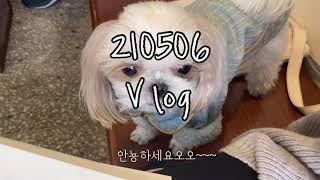 Vlog/ 취준생브이로그/ 210506/ 연희동 투어/…