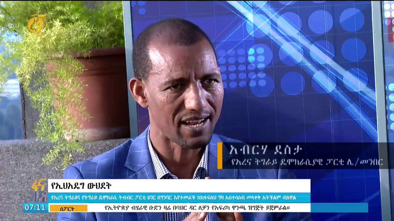 Leaders of Arena and TDCP's comments on EPRDF merger