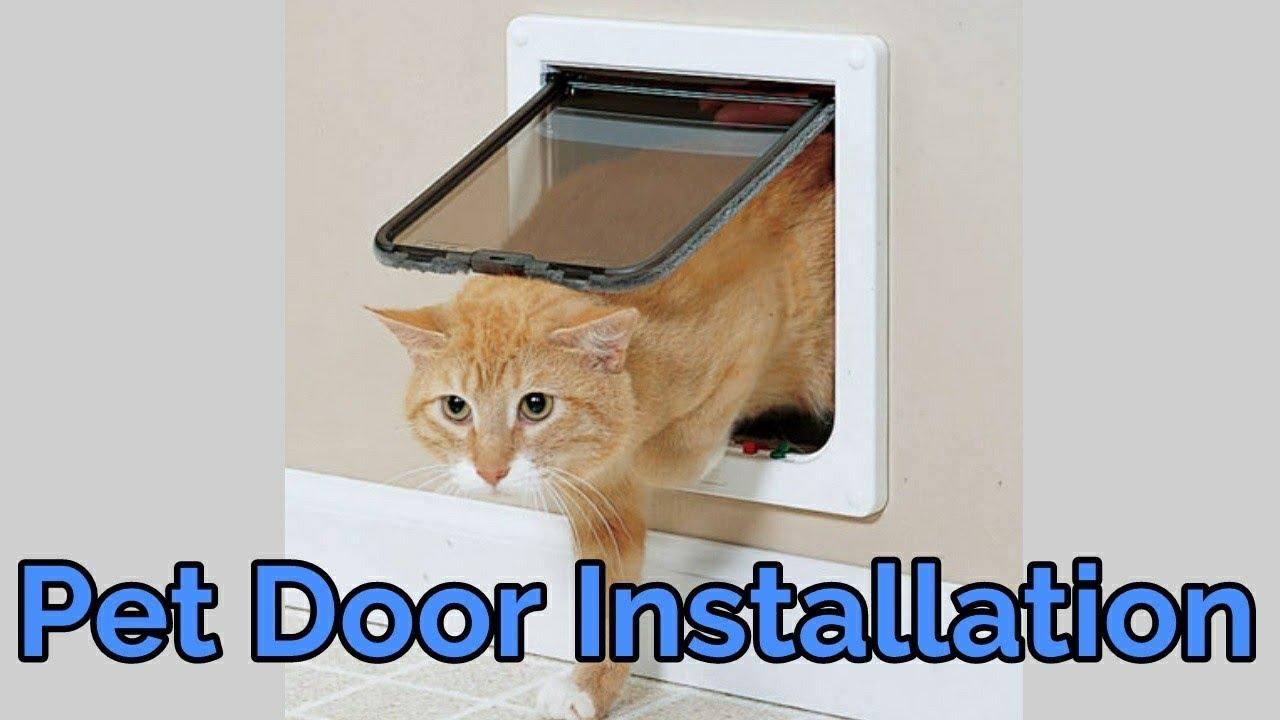 Pet Door Installation In A Metal Door Youtube