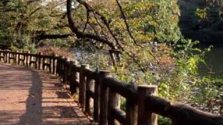吉祥寺&井の頭公園