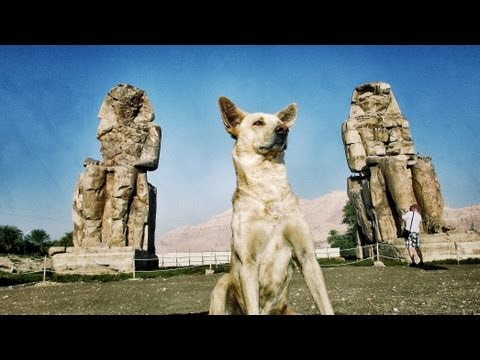 Hurghada - Luxor - Nil - Makadi Bay