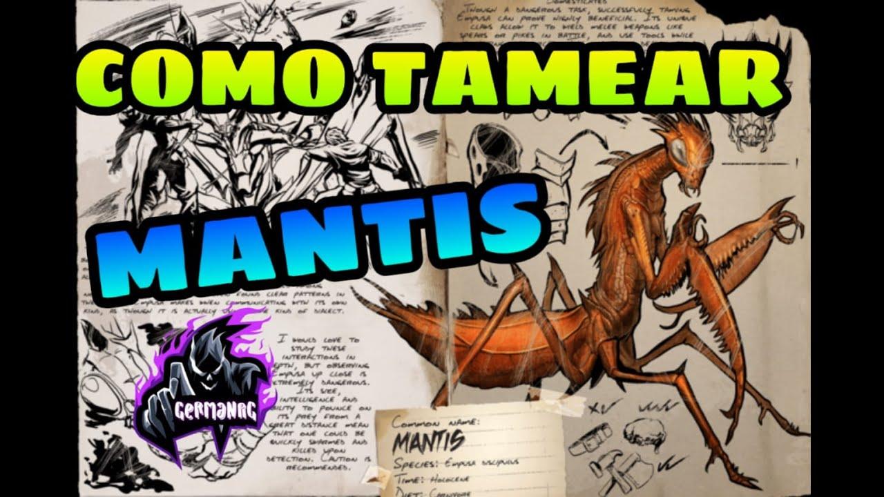 Download COMO TAMEAR A MANTIS SOLO | Guía Español | Ark: Survival Evolved.