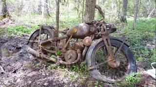 Уникальная находка в Новгородских лесах