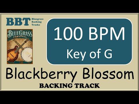 Blackberry Blossom - bluegrass backing track