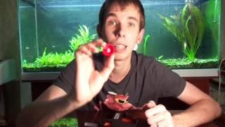 Как Сделать самому СО2 систему для аквариумных растений Подача углекислого газа в аквариум(Если вы хотите помочь и поддержать наш проект Aqua Blog (используя Яндекс.Деньги. Киви ) Webmoney: R186467224975 Z977452989912..., 2015-11-25T22:17:59.000Z)