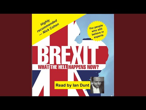 Chapter 61  Brexit: What the Hell Happens Now?