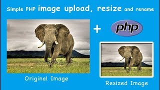 Live Image Upload, Crop, Rename and Resize using PHP