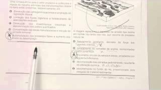 CHROMOS GABARITO ENEM 2015 - Leonardo - Geografia - Questão 31 - Prova Azul