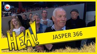 Hea! op de Hynstekeuring 2017: Jasper 366