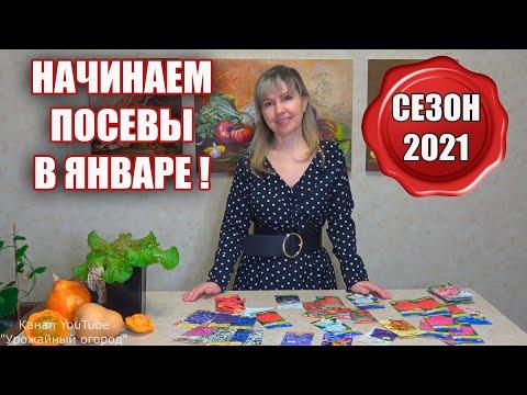 И СНОВА ЗДРАВСТВУЙТЕ!НАЧИНАЕМ ПОСЕВЫ ЯНВАРЬ 2021