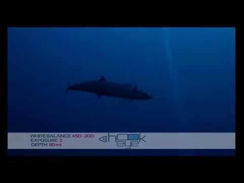 Testing Hook-Eye at 110 meters depth
