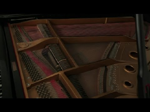 Characteristics of the Piano : Piano Lessons